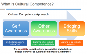 the primary characteristics of culture according to purnells model of cultural competency